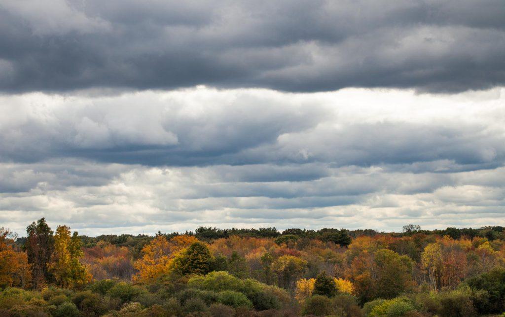 Heavy skies over fall foliage at Mary Cummings Park