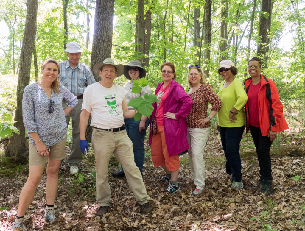 Group  of people with enormous poison ivy leaf