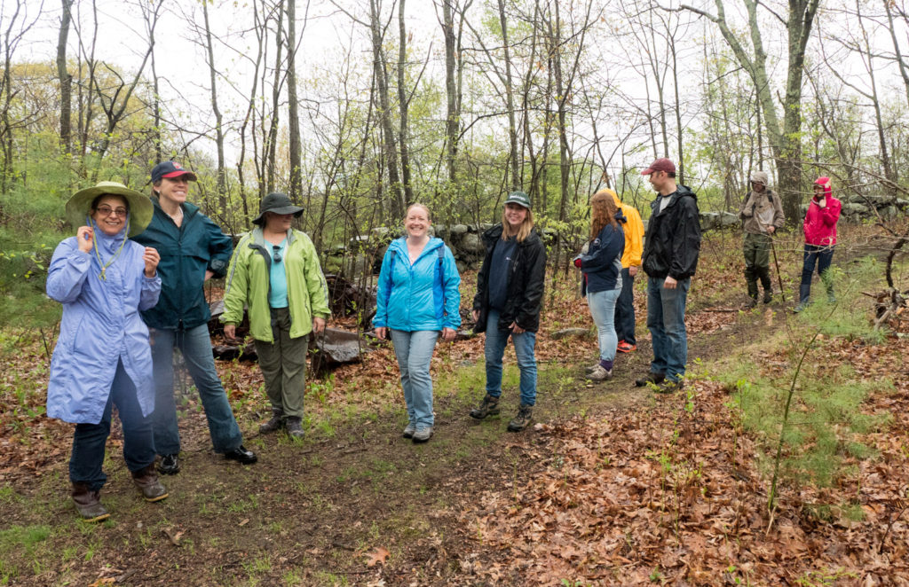Vernal pool walk at Mary Cummings Park