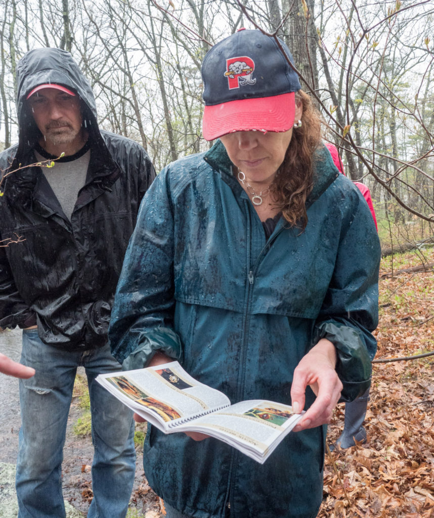 Checking the vernal pool booklet, in the rain, at Mary Cummings Park