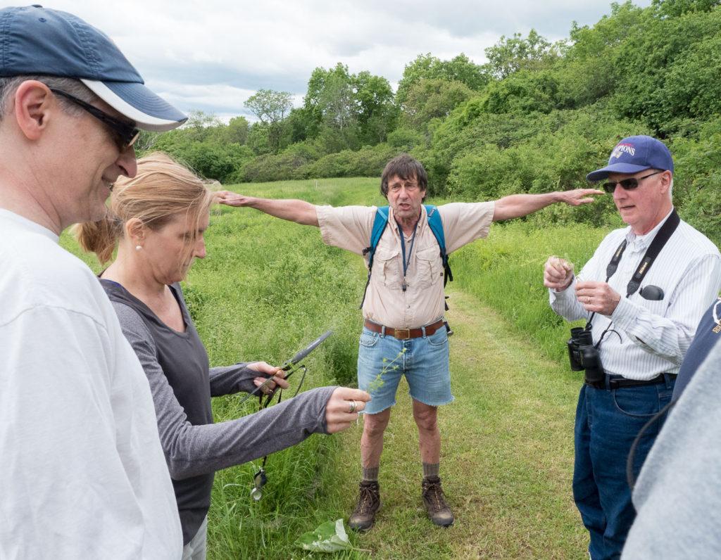 Nature Walk at Mary Cummings Park