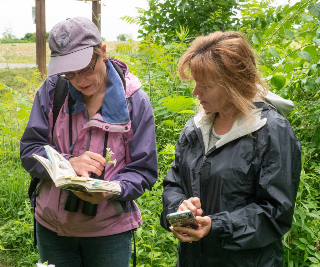 Andrea points out that a book can be very helpful for certain species, but keep in mind that iNaturalist does ID for plants, insects, and animals, so you might need more than one book.
