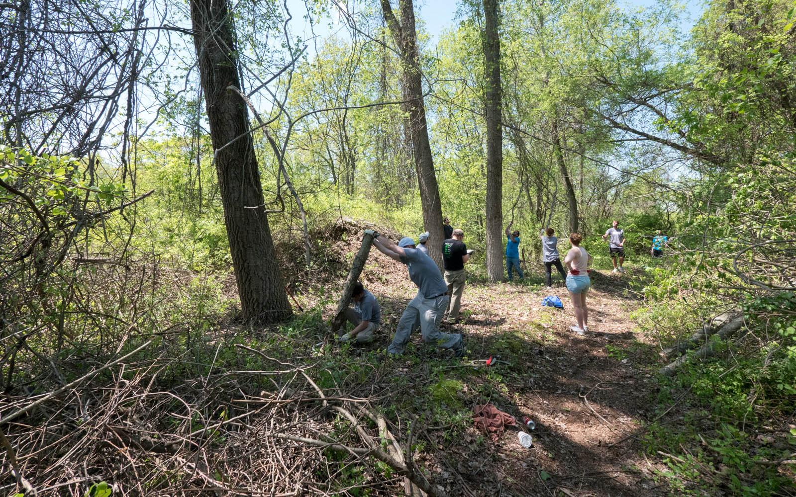 Samsung volunteer at Mary Cummings Park