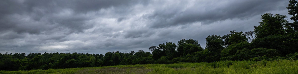 Mary Cummings Park Rain Clouds